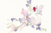 Acuarela Violetas