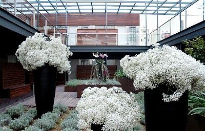 decoracion_boda_paniculata