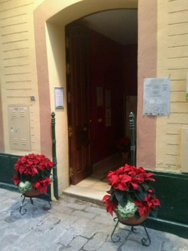 La elegancia y la sencillez de la flor de pascua preside la entrada a #eltallerblanco