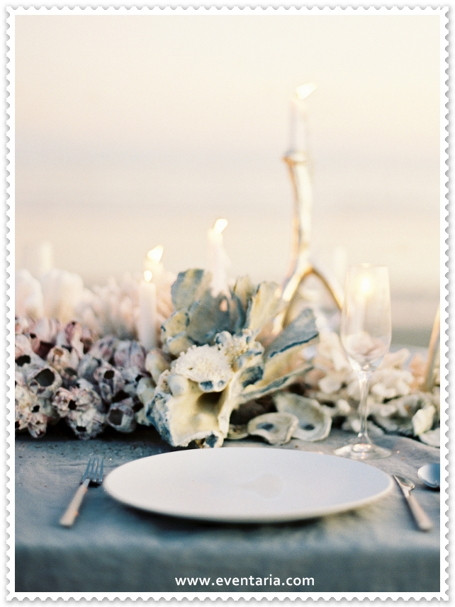 oncewed-jose-villa-joy-thigpen-coral-centerpiece-beach-wedding-reception